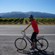 Biking under the influence:  The Marlborough Wine Trail