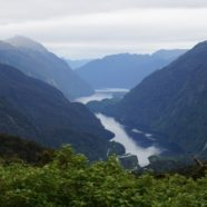 Is Milford Sound the only fjord worth seeing?  Doubtful.