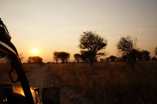 Driving to the bush