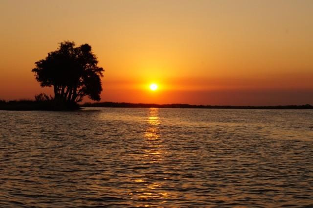 Chobe River Sunset
