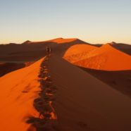 Best of Namibia in Photos